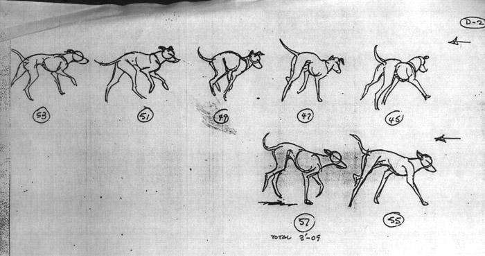 四条腿动物的运动规律3