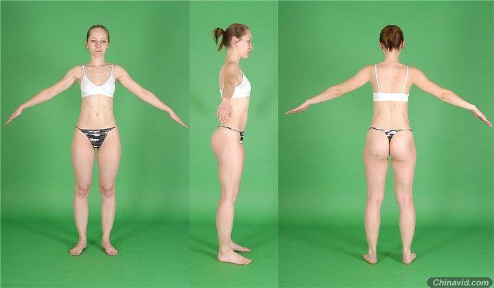 人体建模三视图